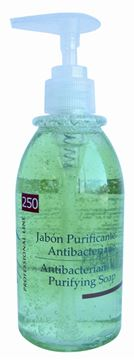 Imagen de Jabón Purificante Antibacteriano 250 ml. Thuya