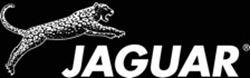 Imagen para el fabricante Jaguar